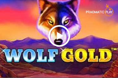 2 wolf gold